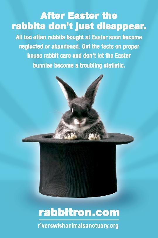 Flyers for easter and bunnies dont mix house rabbit society disappearingrabbits page 001 negle Images