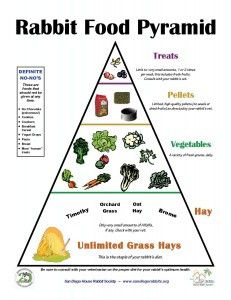 Rabbit_Food_Pyramid-page-001