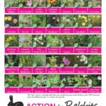 Toxic & Safe Plants-page-001