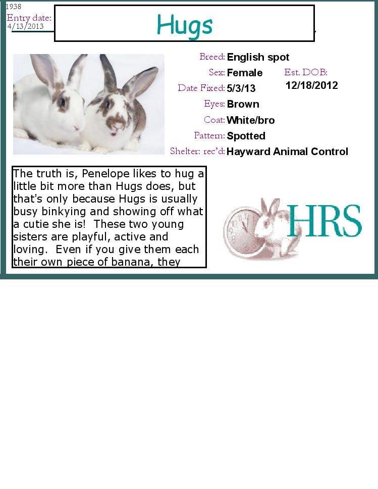 Resources For Animal Shelters House Rabbit Society