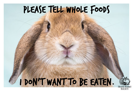 Take Action About Whole Foods