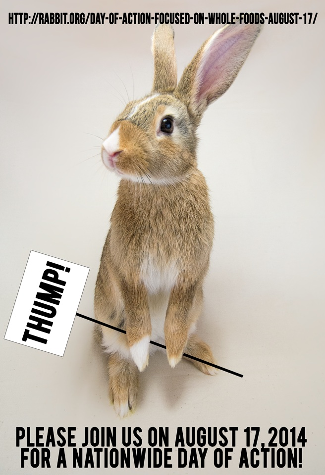 News Coverage: Rabbit Groups Tell Whole Foods Market to Stop Selling Bunny Meat