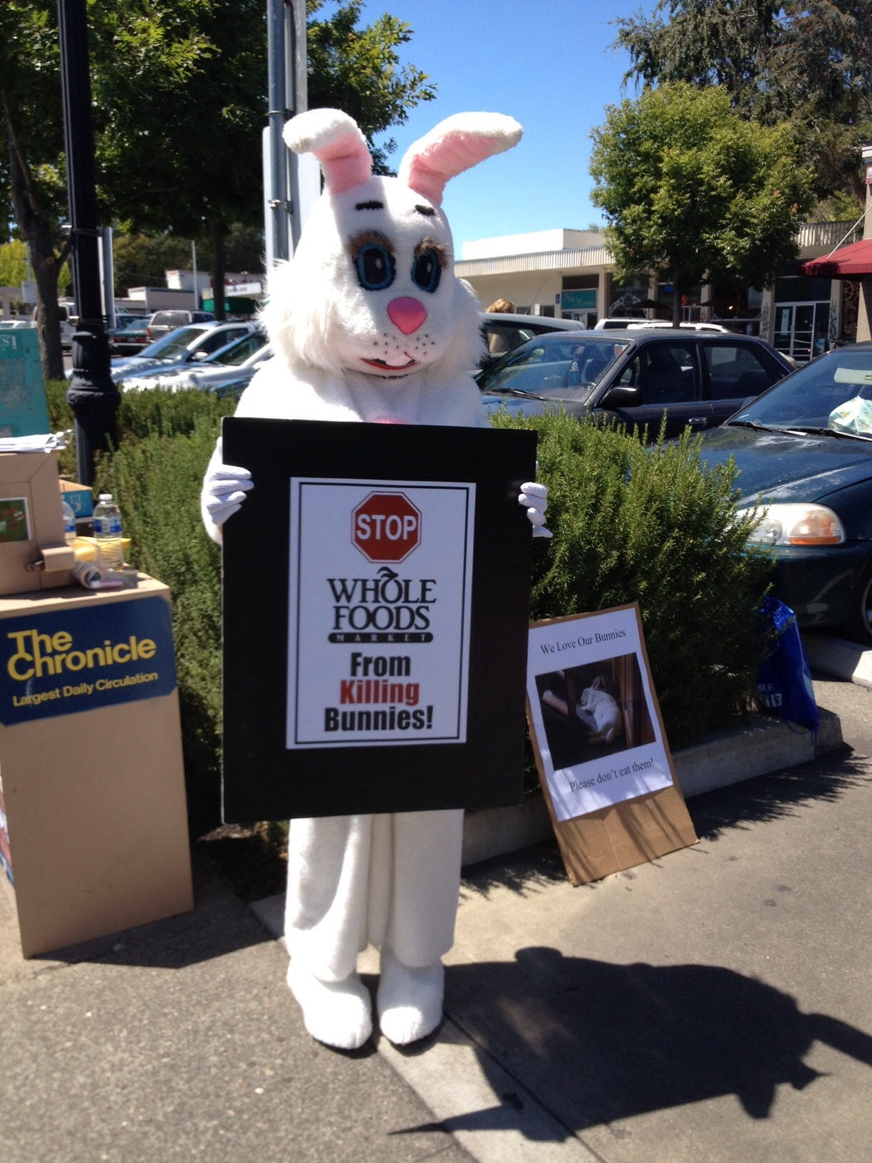 Rabbit Groups Protest Whole Foods | House Rabbit Society