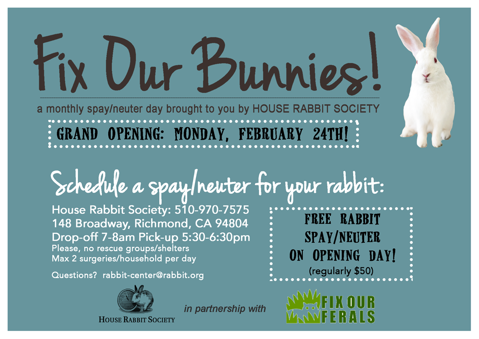 Fix Our Bunnies Grand Opening