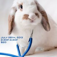 New Developments in Rabbit Medicine and Care with Dr. Scheenstra