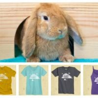 One week only!  Original House Rabbit Society t-shirts from Float.org!