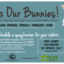 Monthly Rabbit Spay/Neuter Clinic – Grand Opening: February 24th