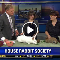 HRS on the news!