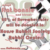 Flat Bonnie is donating 20% of November proceeds to HRS Rabbit Center!