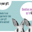 We did it! Doubled Your Donations in March!