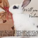 Will You Be Some Bunny's Valentine?