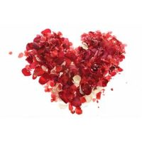 Annual Valentine Luncheon and Gift Boutique