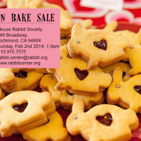 Valentine (vegan!) Bake Sale – February 2nd