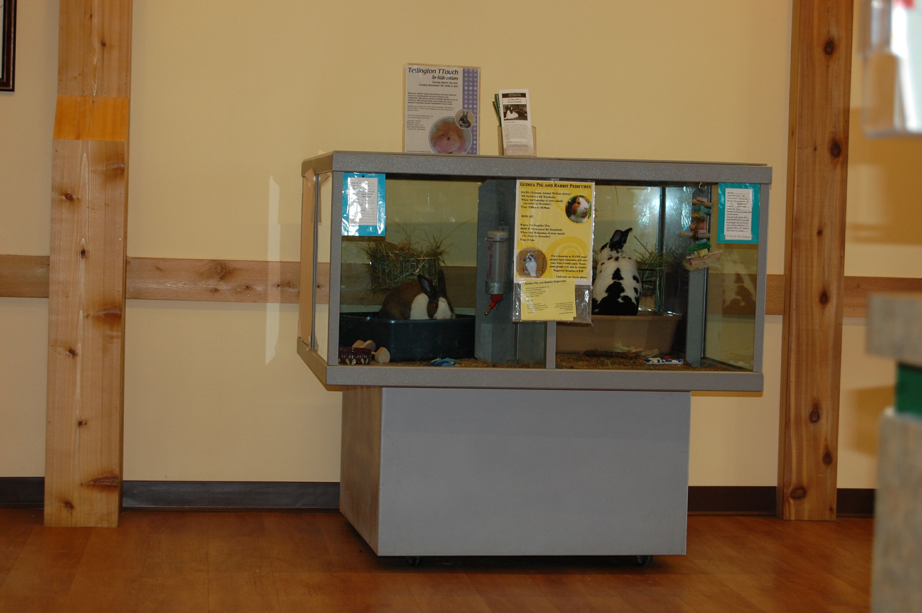 Display Cage at HAWS