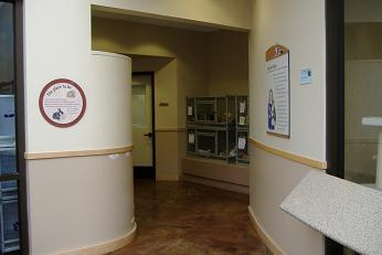 Corridor to Rabbit Area at San Diego Humane Society